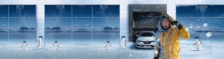 Penguin Zoznamka webové stránky